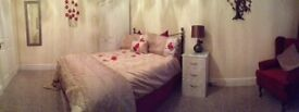 Beautifully furnished large double room near the Wells Road, Knowle, Bristol