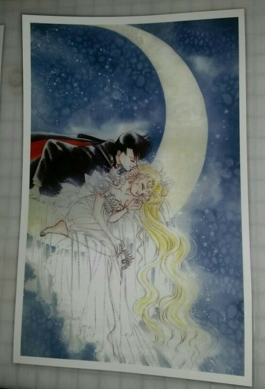 Sailor Moon Manga Art Style poster Serenity and Endymion 11x17 laminated.