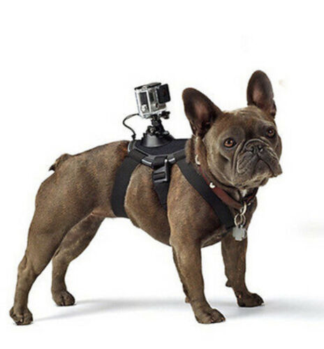 GoPro accessories Dog strap Harness belt for Gopro Hero 8/7/6/5/4/3/xiaomi yi/sj