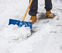 Active Handyman; Landscape and Snowremoval