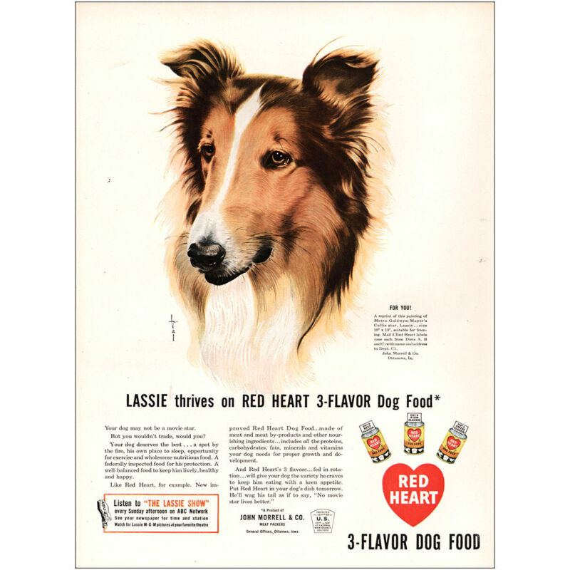 1947 Red Heart Dog Food: Lassie Thrives Vintage Print Ad