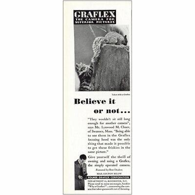 1932 Graflex: Believe It or Not Squirrel Cat Vintage Print Ad