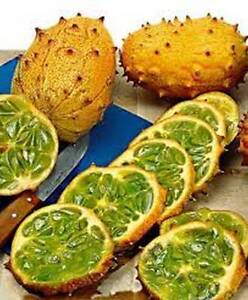KIWANO (AFRICAN HORNED MELON or PRICKLY CUKE) CUCUMBER - 25 seeds HERITAGE