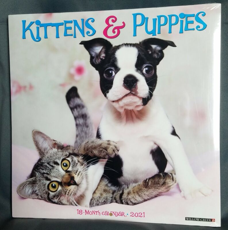 """Kittens & Puppies 2021 Adorable Wall Calendar 12""""X12"""" Willow Creek Sealed New"""