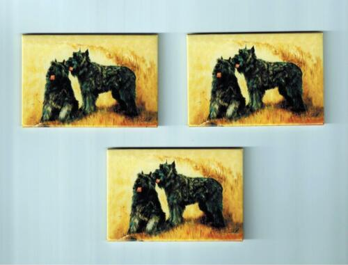 New Bouvier Des Flanders Magnet Set 3 Magnets By Ruth Maystead MFR # BDF-1