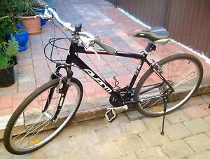Avanti Expedition Hybrid Bike St Peters Marrickville Area Preview