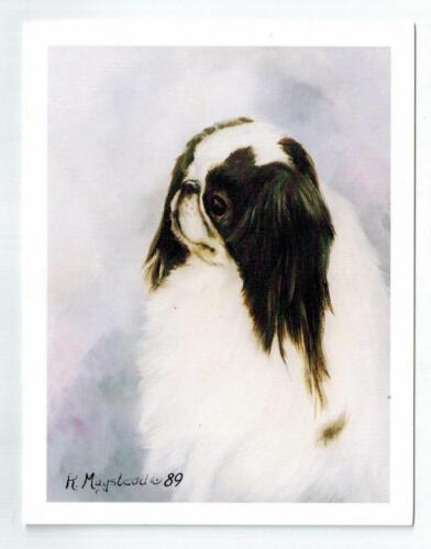 New Japanese Chin Head Study Notecard set - 12 Note Cards By Ruth Maystead JPC-1