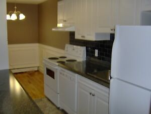 Renovated Two Bedroom Suites on Dutch Village Road