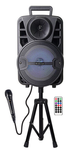 "Portable 1600 Watts Peak Power 8"" Speaker -Flash8 WITH STAND AND MICROPHONE"