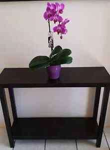 Chocolate Side Table Clear Island Waters Gold Coast City Preview
