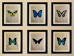SET OF 6 ART PRINTS ON OLD ANTIQUE BOOK PAGE - Butterflies, Vintage, Upcycled