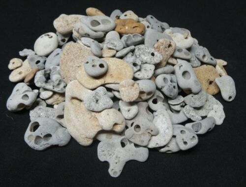 Stonez-N-Bonez Natural Holey Hag Stone Lot 1/2lb Sizes Vary Fairy Wish
