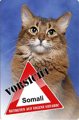 Somali-katze (SOMALI Katze - A4 Metall Warnschild Katzenschild SCHILD Türschild - CAT 03 T3)