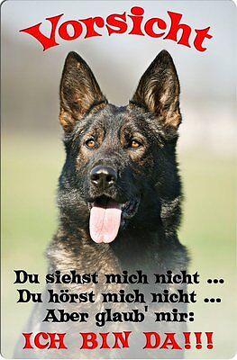 Deutscher SCHÄFERHUND - A4 Metall Warnschild Hundeschild Alu SCHILD - DSH 35 T2