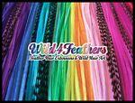 Wild4Feathers