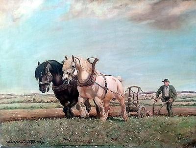Pferde Wilhelm Westerop 1876-1954 Gemälde Öl auf Leinen