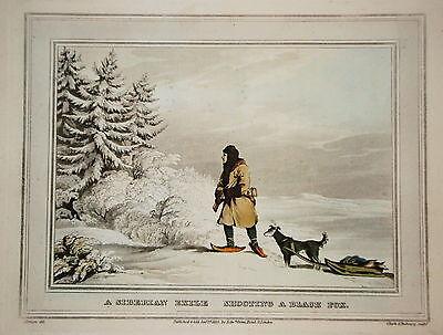 Fuchs Fuchsjagd Jäger Jagd  altkolorierter Kupferstich in  Aquatinta 1813