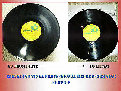 Professional Record Cleaning Service, Ultrasonic Machine Cleaned + VPI 5 records