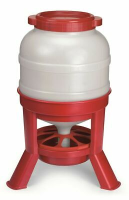 Little Giant Domefdr45 Plastic 45 Lb. Dome Poultry Feeder