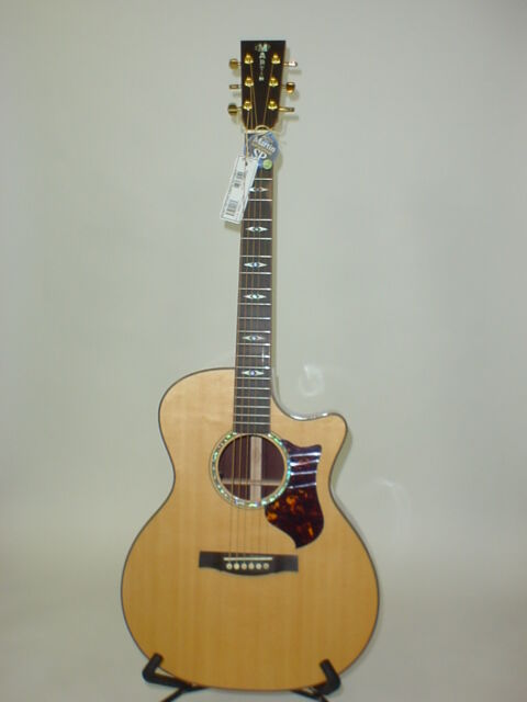martin gpcpa1 performing artist series acoustic electric guitar ebay. Black Bedroom Furniture Sets. Home Design Ideas