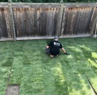 Sod Installation, Removal and Repair-MacLean's Property Services