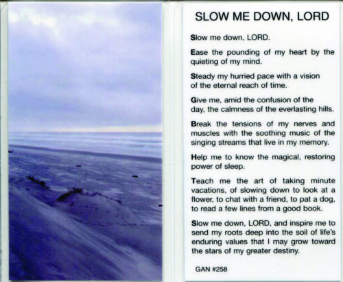 Slow Me Down, Lord and Ease the Pounding of My Heart. Quiet My Mind Prayer Card