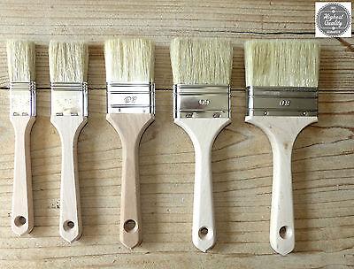 PROFI- Maler Pinsel Lackierpinsel Lasurpinsel Flachpinsel Farbe Lack Kreidefarbe (Lack Pinsel)