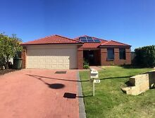 TO GOOD TO MISS...SECOND CHANCE!! IM OPEN SAT AND SUN 3-4pm Baldivis Rockingham Area Preview