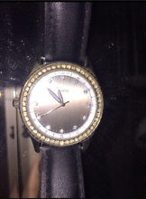 Ladies watch Swan View Swan Area Preview