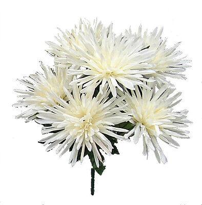 6 Fuji Mums ~ Cream Ivory ~ Spider Silk Wedding Flowers Bouquets Centerpieces
