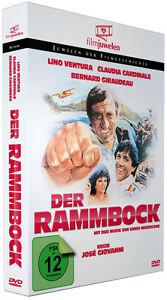 Der Rammbock - mit Lino Ventura und Claudia Cardinale - Filmjuwelen DVD