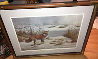 Beautifully framed wildlife prints for sale