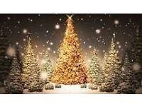 Christmas market boot sale Sunday 11th december