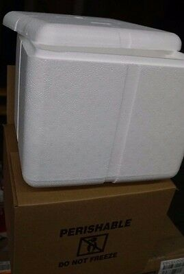 Insulated Foam Shipper Boxed Kit 1.5 Thick Wall -11.5 X 10 X 9.25 Inner Dim