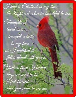Insprirational Red Cardinal Blessed Bird Refrigerator Fridge Magnet Gift Item