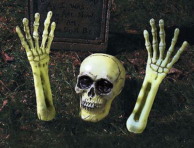 Crâne De Squelette brille dans le noir TOMBE SOL valve accessoire d'Halloween - Decoration Tombe Halloween