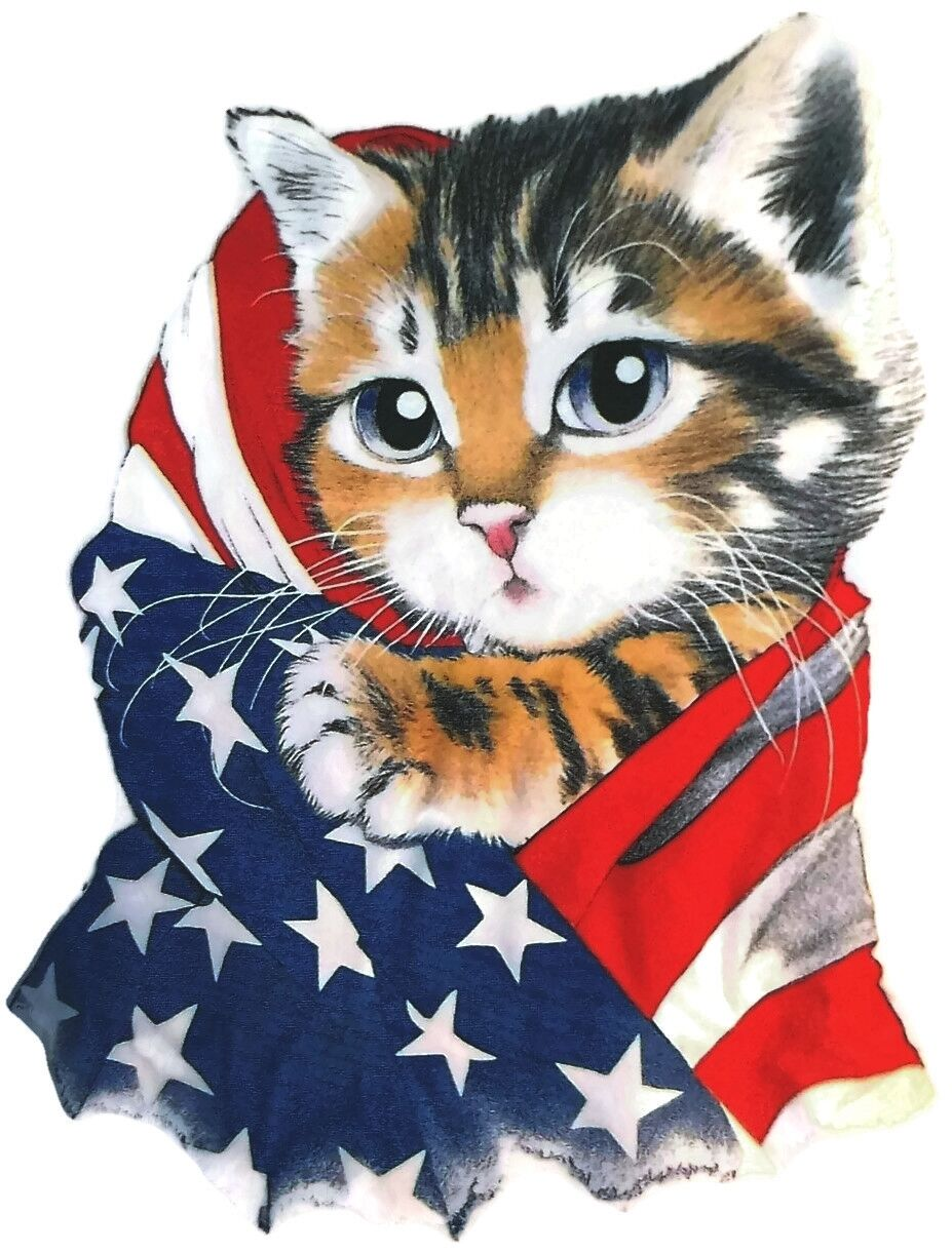 american flag and cat shirt patriotic 4th