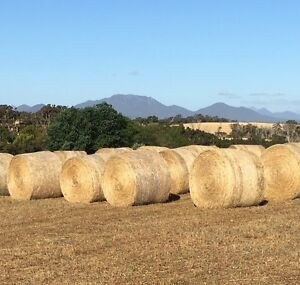 160 x NEW SEASONS MEADOW HAY ROLLS Kendenup Plantagenet Area Preview
