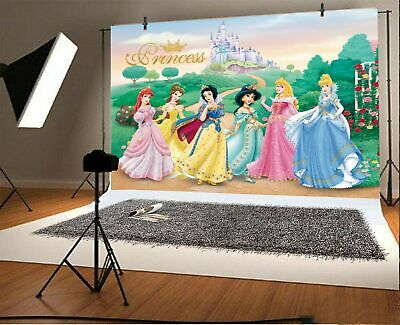 Princess Girls Birthday Party Vinyl Photography Backdrop Kids Photo Studio - Princess Background