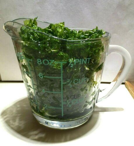 1+ Cup - Clean Ulva Sea Lettuce Live Saltwater Macro Algae Barn - Large Portion