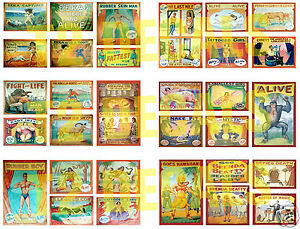 HO-Scale-Circus-Sideshow-Decals-MEGA-SHEET-3