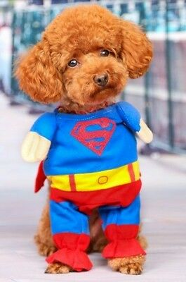 Puppy Cat Dog Pet SuperMan Costume Halloween Outfit Superdog Gift Fancy Dress S - Superman Dog Outfit