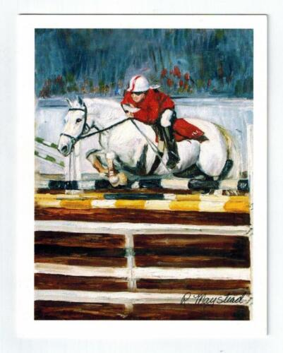 New White Horse Equestrian Notecard Set - 6 Note Cards By Ruth Maystead # HOS-14