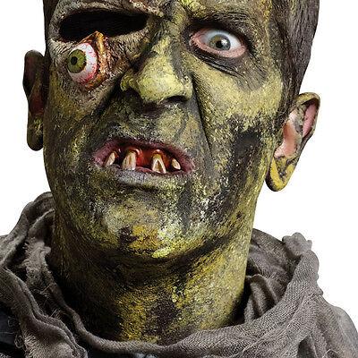 Zombie Teeth Monster FX Dental Appliance Adult Halloween Costume Accessory (Dental Halloween Costumes)