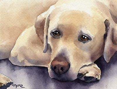 LABRADOR RETRIEVER Painting DOG 8 x 10 Art Print Signed by Artist DJR