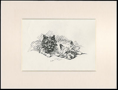 CAIRN TERRIER TWO LITTLE DOGS 1930'S DOG SKETCH PRINT by MAC LUCY DAWSON MOUNTED