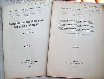 1913 Lote De Memorias Neurologiche De Vito Maria Buscaino De Taladros