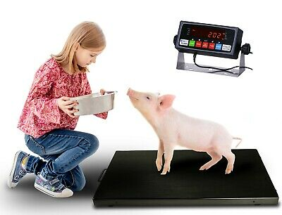 New Prime Scales 700lb Livestock Scale Vet Scale Animal Scale With Indicator