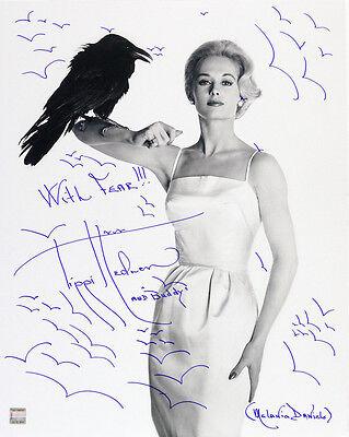 1963 Tippi Hedren The Birds Signed LE 16x20 B&W Photo (JSA)