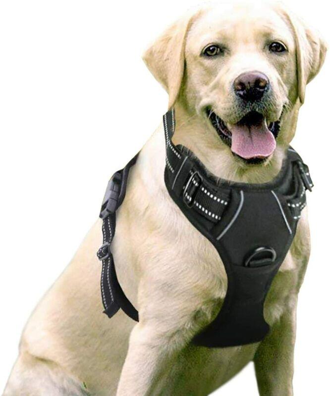 Rabbitgoo No-Pull Dog Pet Harness Control Adjustable Reflective Collar Soft Vest